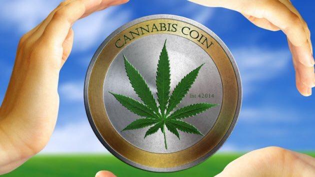 Cannabiscoin – Bitmain D3 Antminer produziert mit bis zu 19GH Leistung